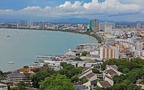 Pattaya Yanıt
